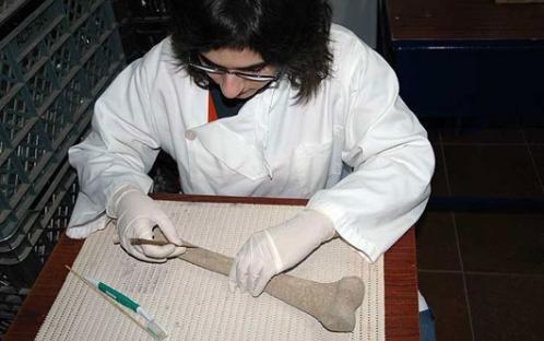 Limpeza e acondicionamento dos vestígios osteológicos